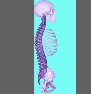Spinal Stenosis Prognosis