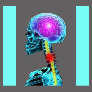 Spinal Stenosis Research